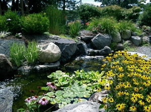 Beautiful landscaping demos.  Can you see the koi?